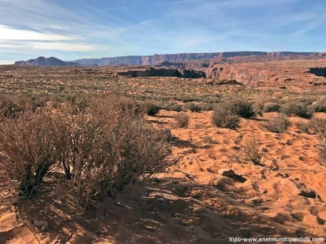 desierto-horseshoe-bend